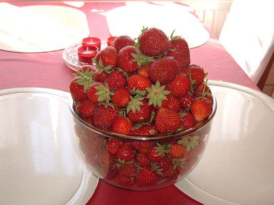 meine erdbeeren