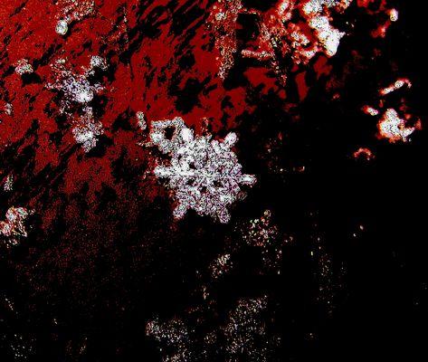 Meine erste Schneeflocke...2009