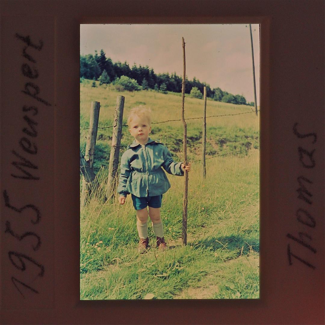 Meine ersten Wanderschuhe - eingelaufen im Sauerland 1955 mit zwei Jahren - . . .