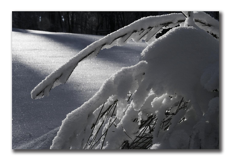 meine erträgliche version von winter