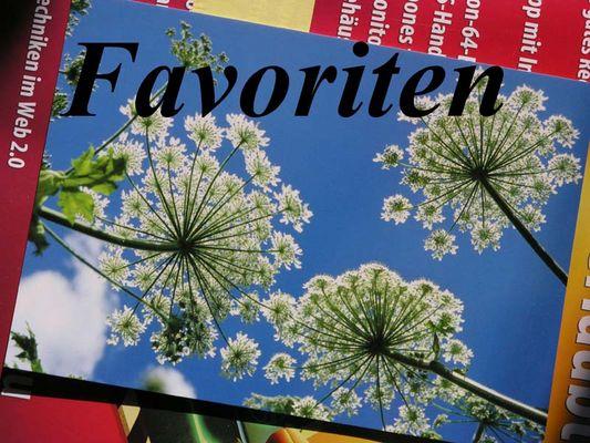 Meine Favoriten :-)