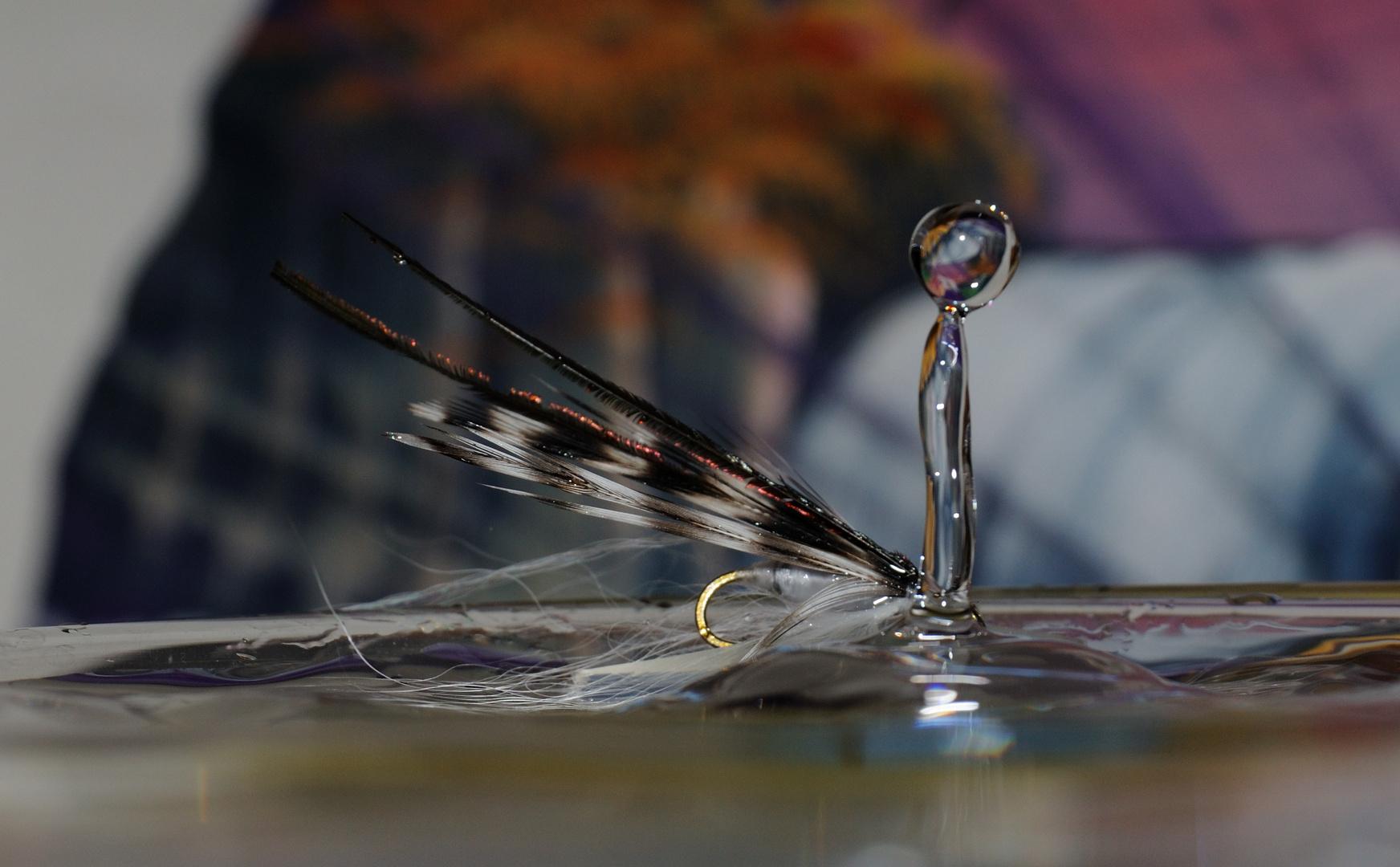 Meine Fliegen