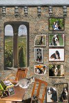 Meine Freunde_eine Collage