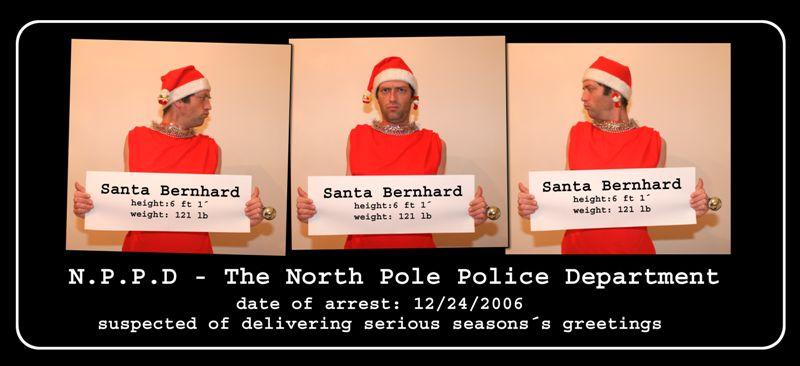 Meine heurige Weihnachtskarte