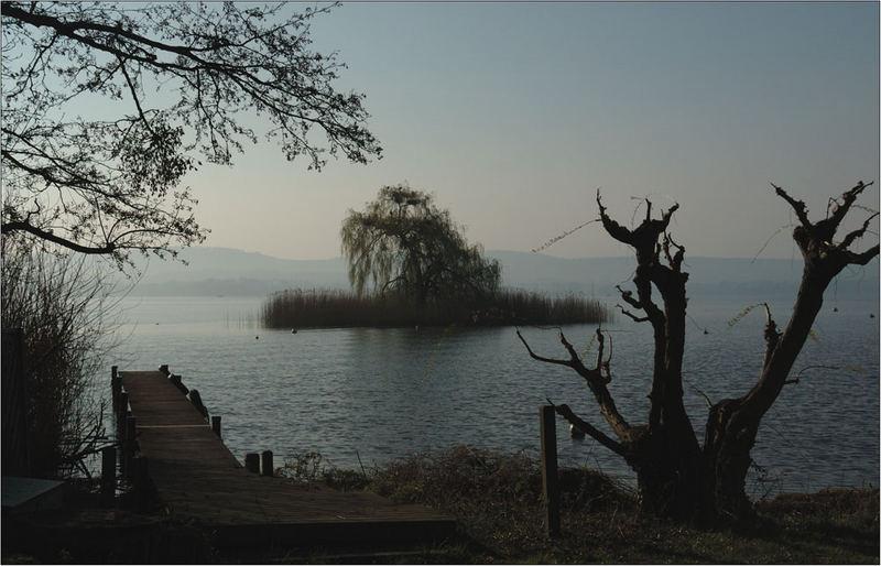 """""""meine"""" kleine Insel im Murtensee..."""