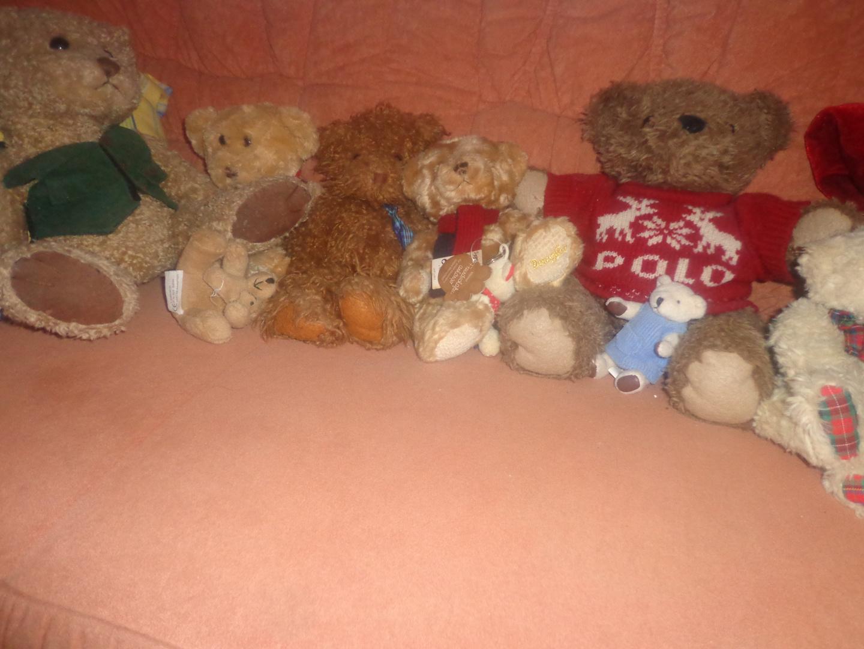 Meine kleine Teddyparade