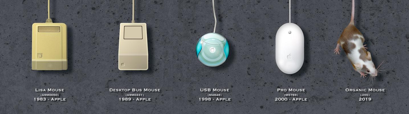 Meine Mäuse (oder die Geschichte der Apple-Maus