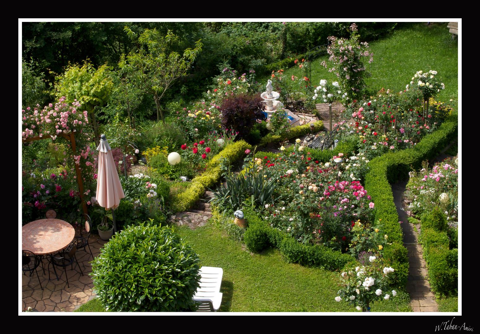 """Meine schöne Gartenschau Nr. 10 """" mein Rosengarten """""""