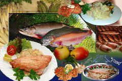 Meine schönsten Variationen vom Fisch