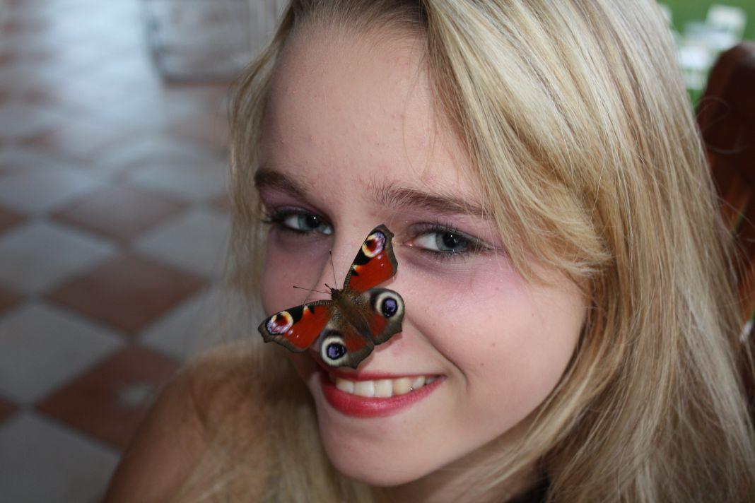 meine Schwester und der Schmetterling
