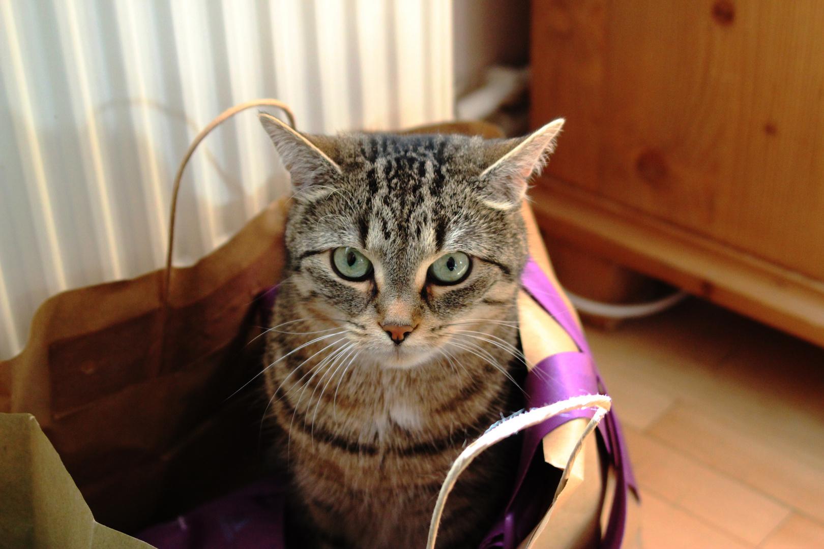 meine Tasche..