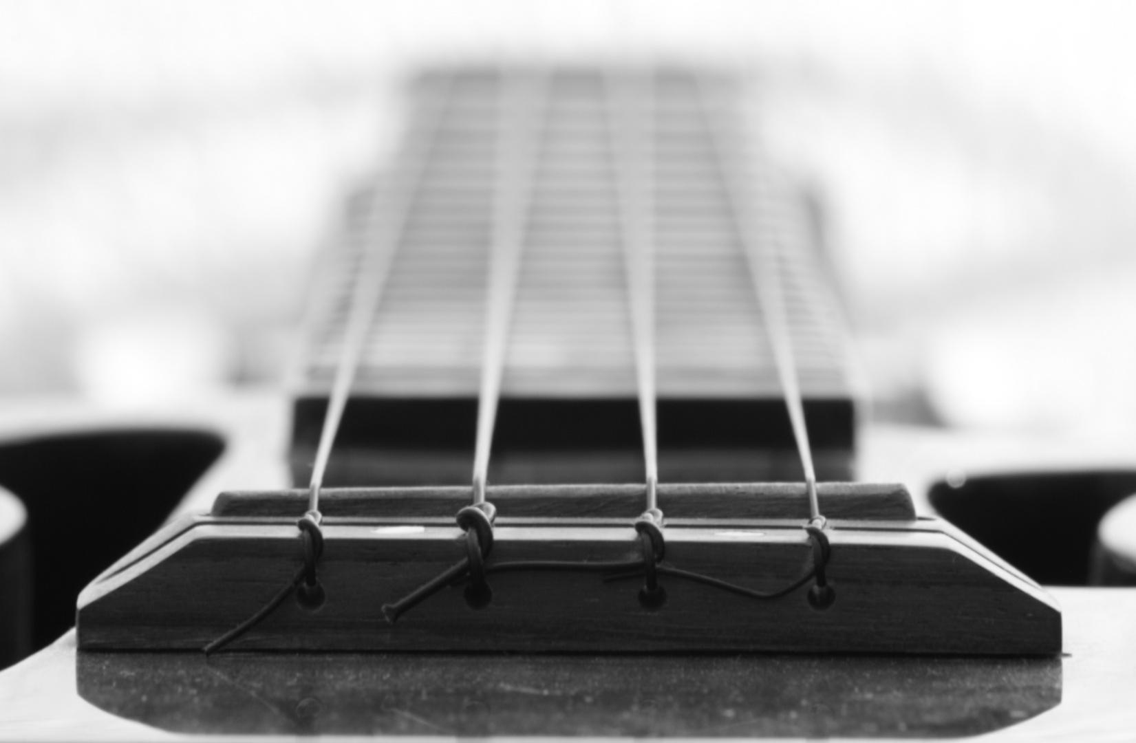meine ukulele