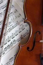 meine violine(anno 2006)