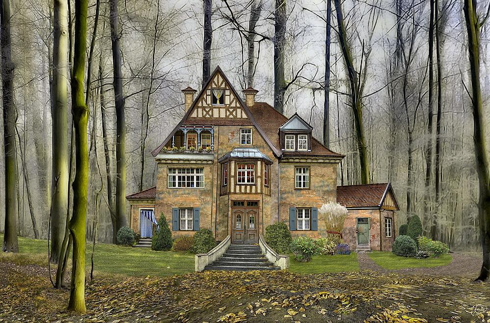meine wald villa foto bild eine vorlage ein bild 13 eine vorlage ein bild archiv. Black Bedroom Furniture Sets. Home Design Ideas