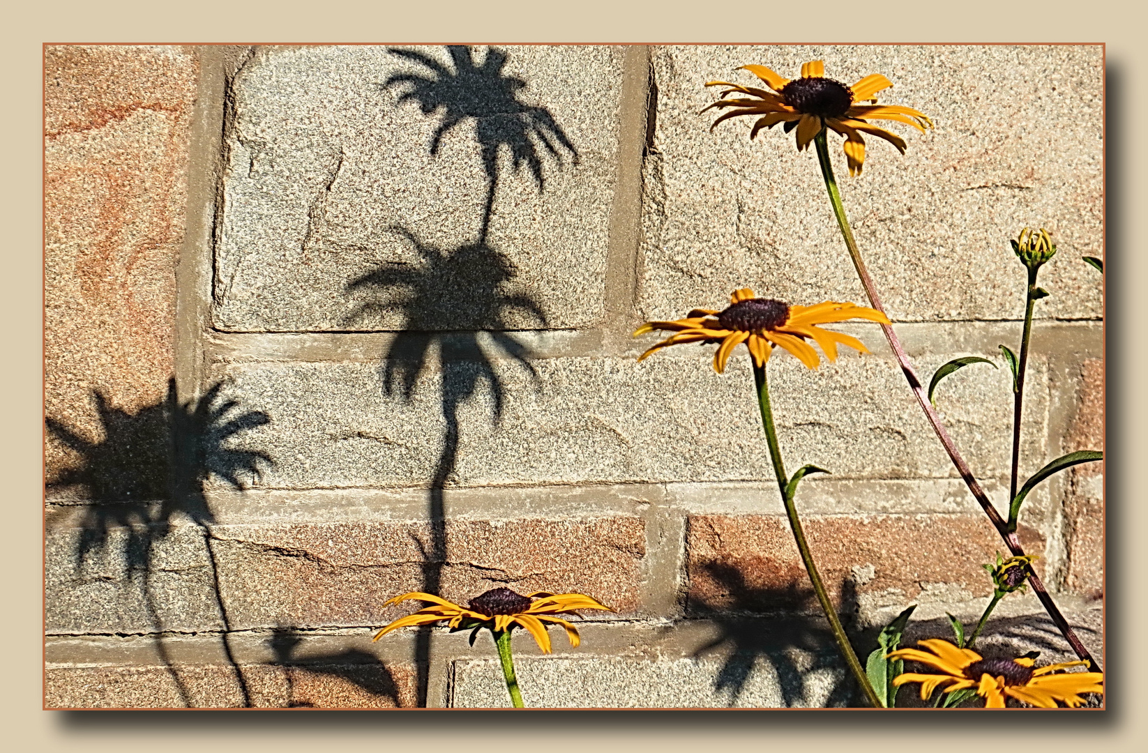 """Meinung der Sonnenhüte : """"zumeist sind wir nie alleine und wir verstehen uns...."""""""