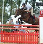 Meisterschaft im Pferdesport Junior Open