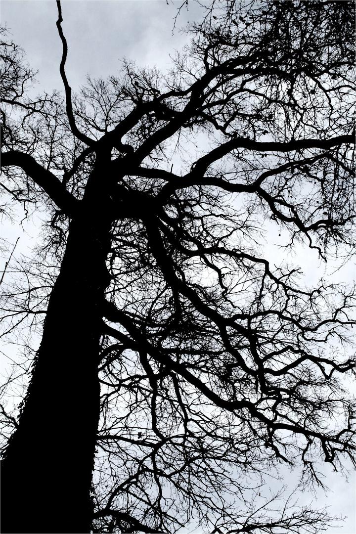 Melancholisch und Mystisch