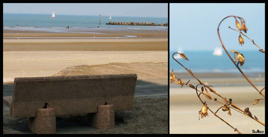 Melancoly Beach.