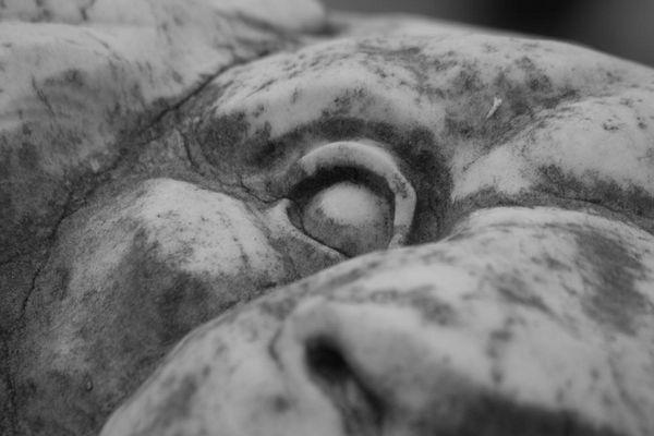 Melaten Friedhof in Köln