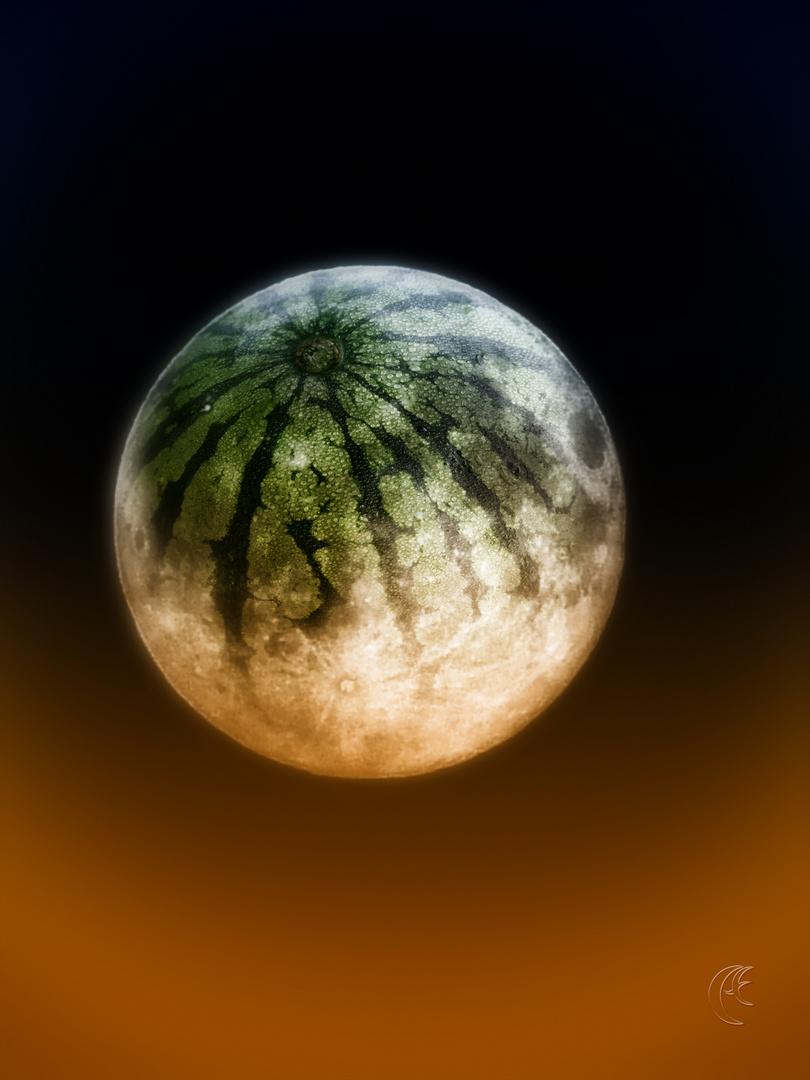 MelonMoon