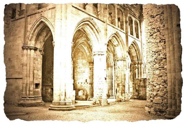 Melrose Abbey - Argyrotypie