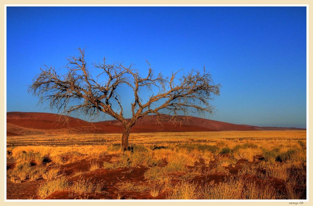 MEMORIAS DE AFRICA - AMANECER EN SOSSOSVLEI