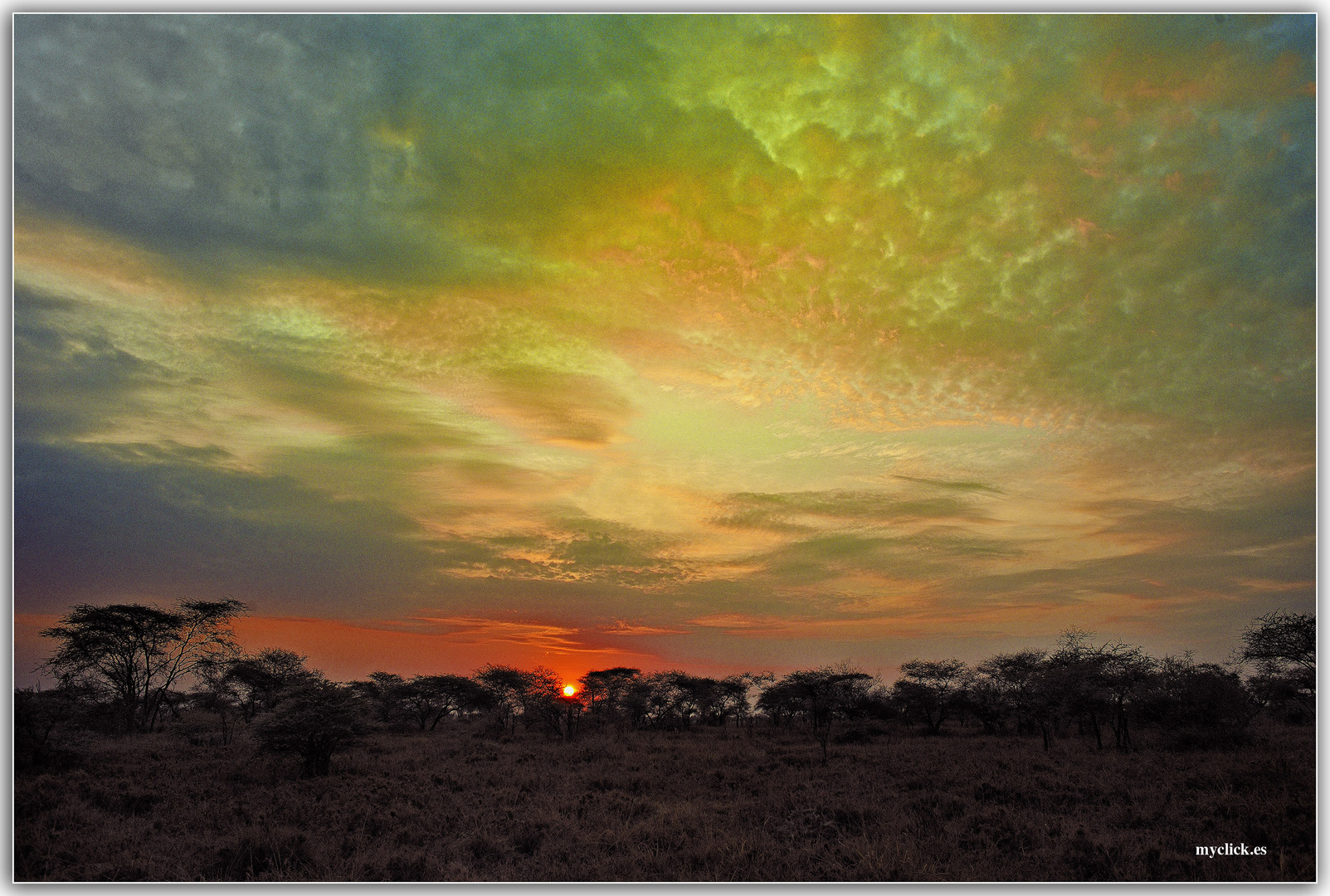MEMORIAS DE AFRICA-ATARDECER EN EL MARA -KENIA