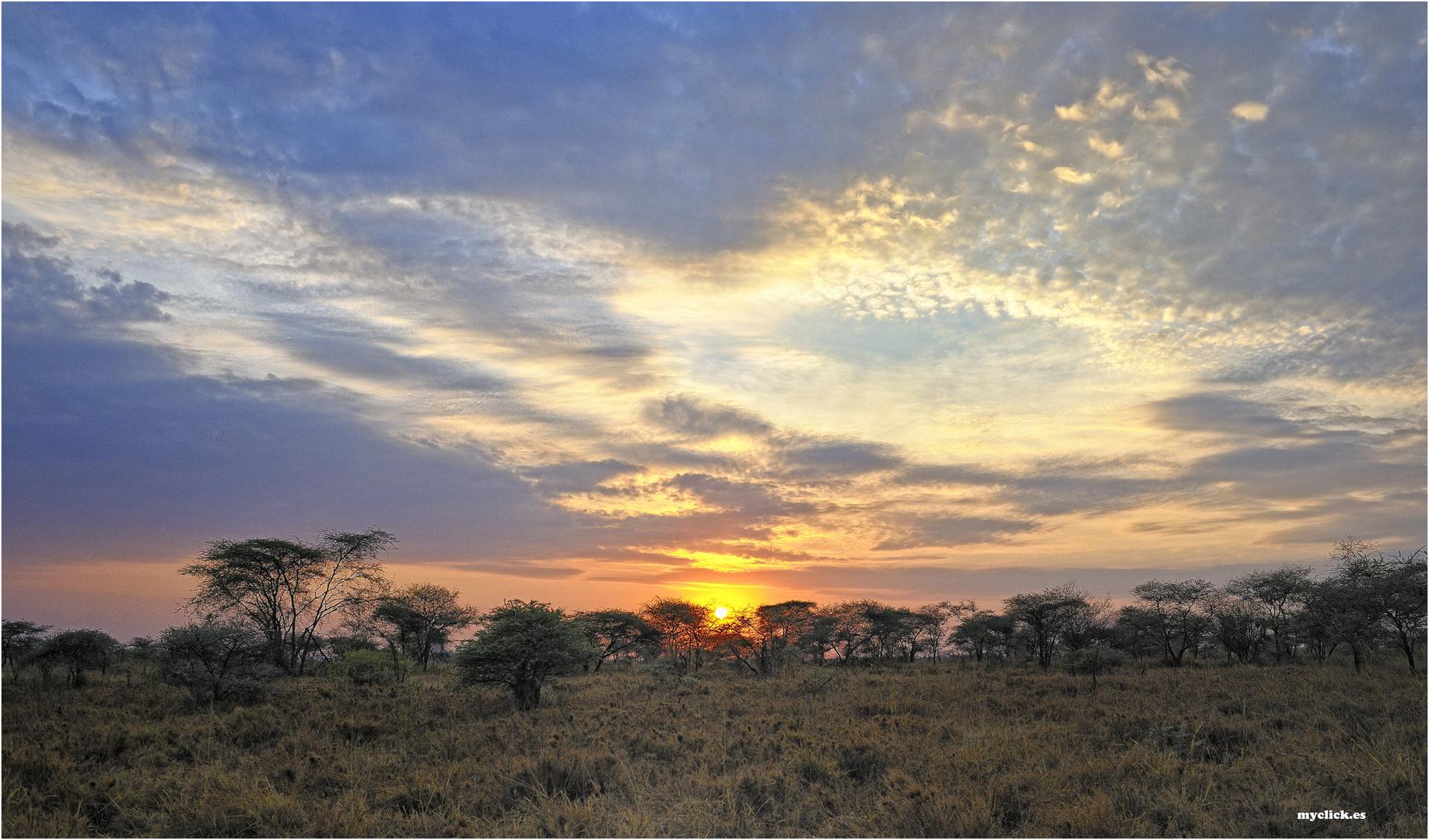 MEMORIAS DE AFRICA - ATARDECER EN EL SERENGUETI- TANZANIA