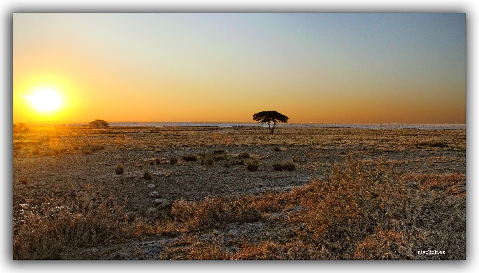 MEMORIAS DE AFRICA-ATARDECER EN ETHOSA-NAMIBIA