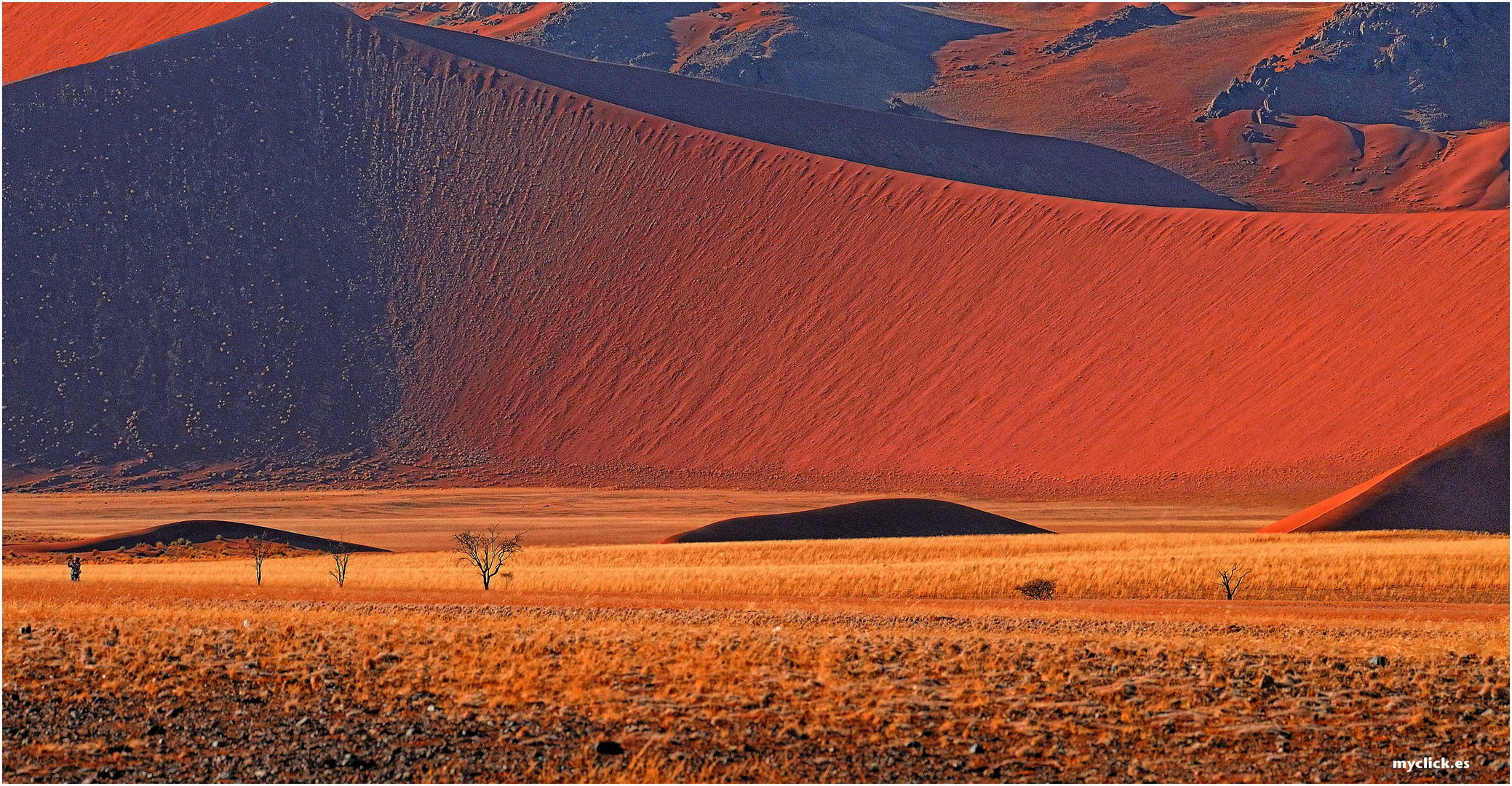 MEMORIAS DE AFRICA -CONTRASTES DE SUSSVLEI 2 -NAMIBIA