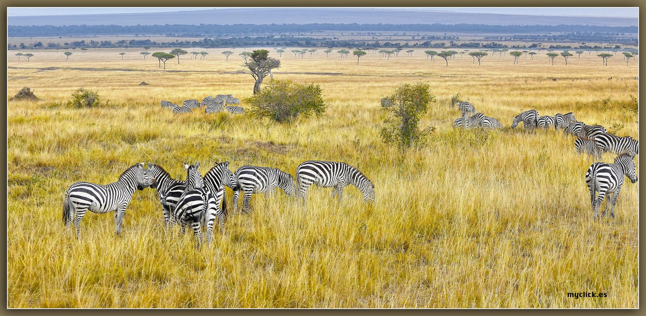 MEMORIAS DE AFRICA-LA PRIMERA ACAMPADA DEL MARA -KENIA