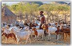 MEMORIAS DE AFRICA-LA RECOGIDA DEL GANADO-LOS HIMBAS NAMIBIA