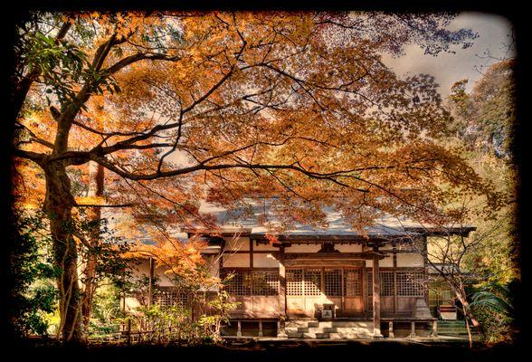 Memories of Autumn 2011