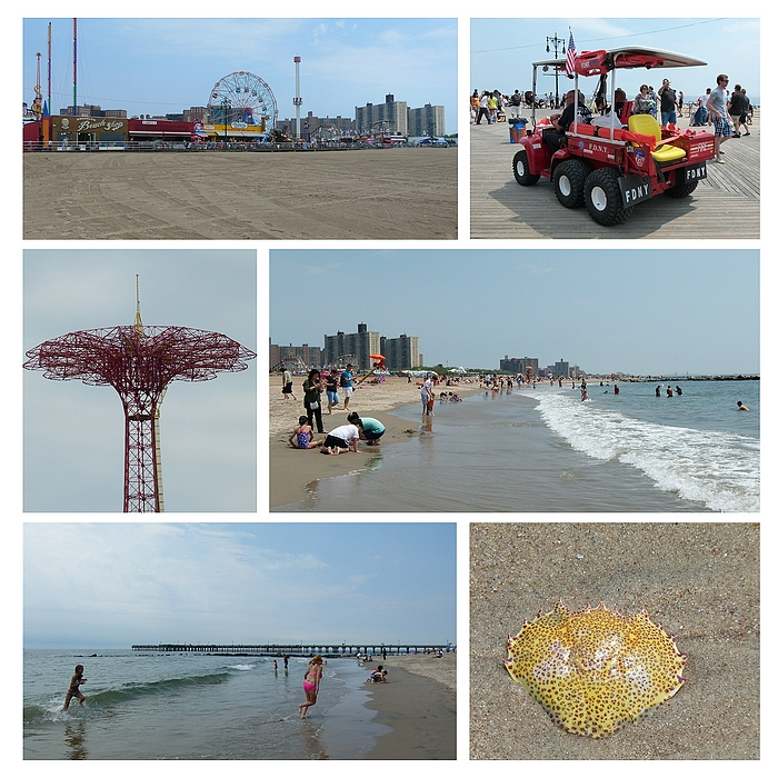 ...Memories of Coney Island...