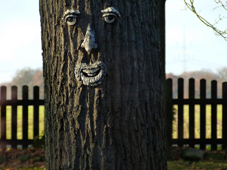 Men Freund der Baum