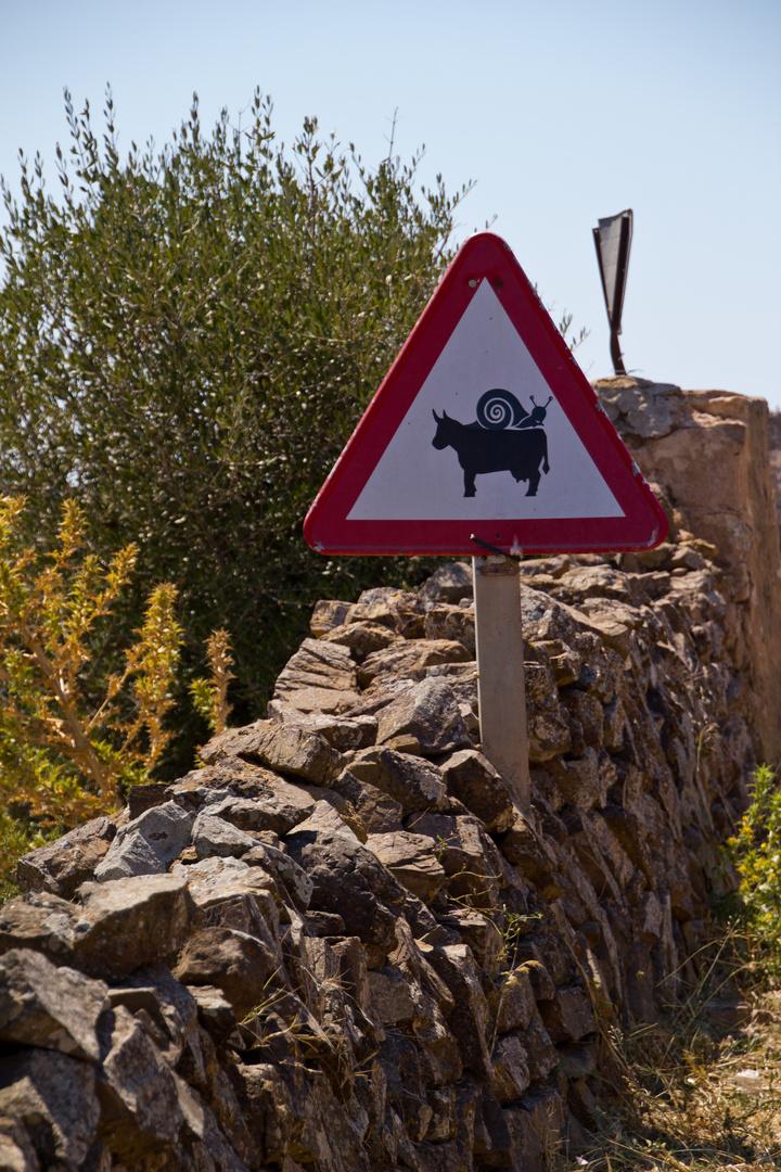 Menorca Impressionen - Inseleindrücke (233)