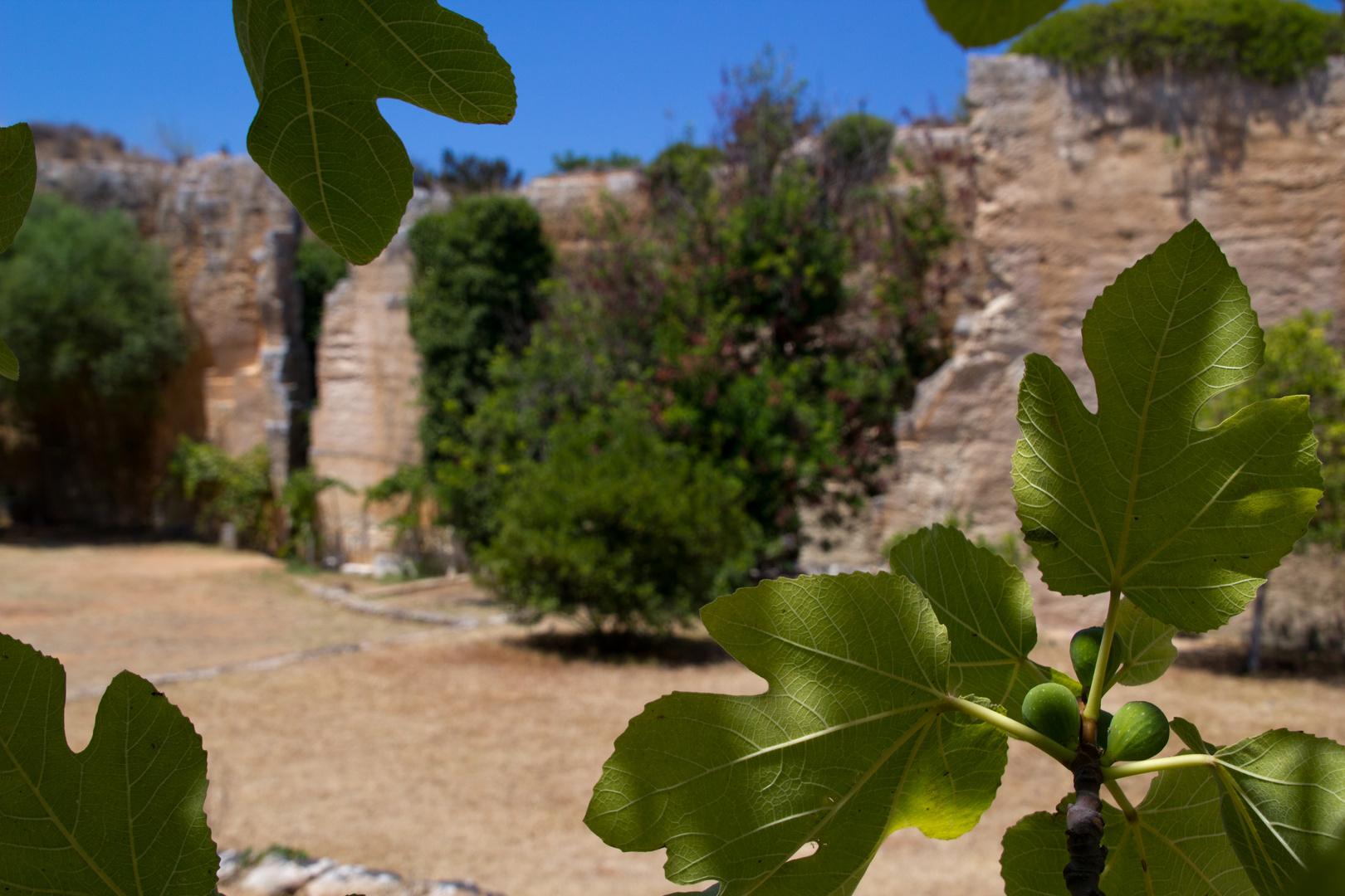Menorca Impressionen - Steinbruch Lithica (179)
