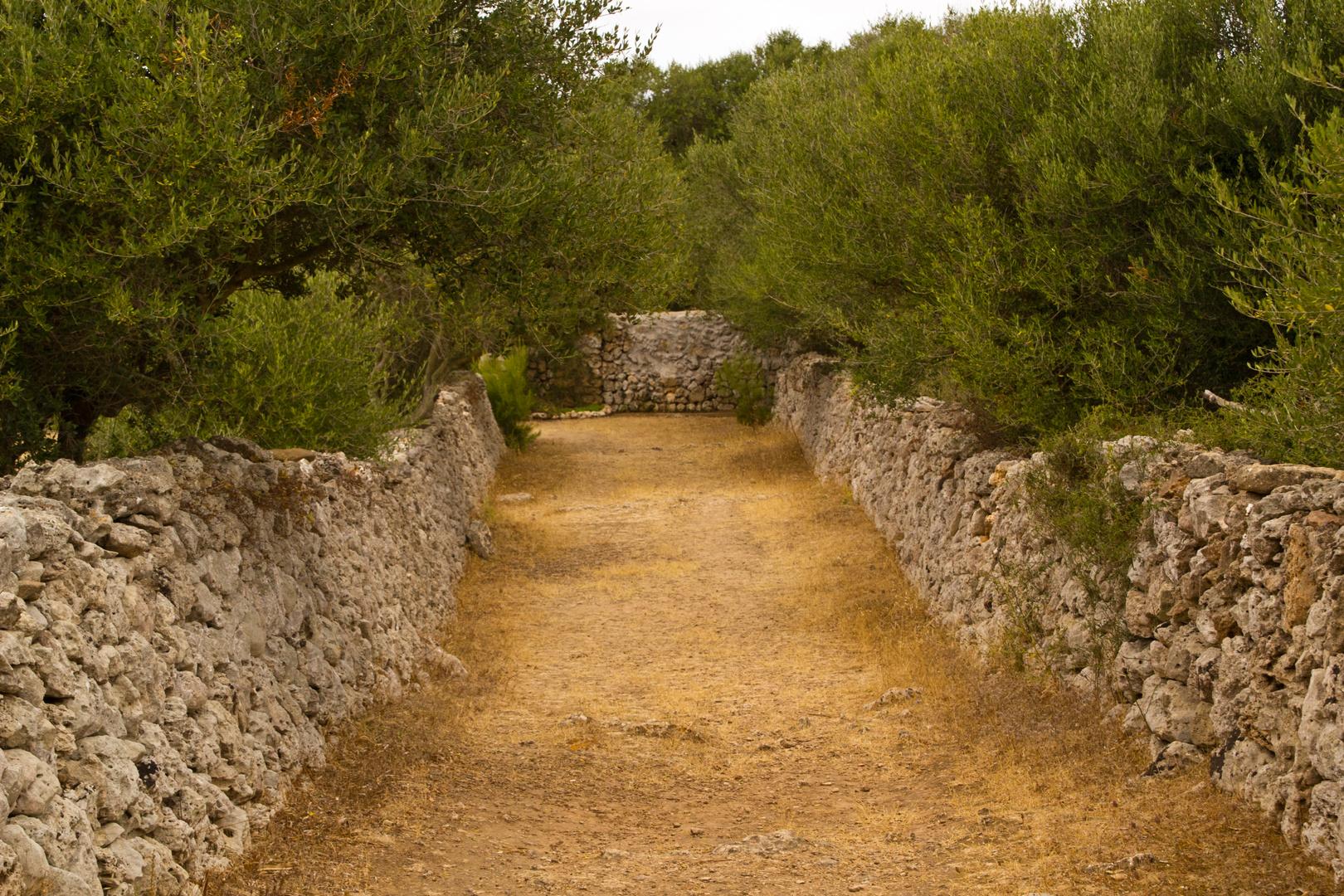 Menorca Impressionen - Talati de Dalt (190)