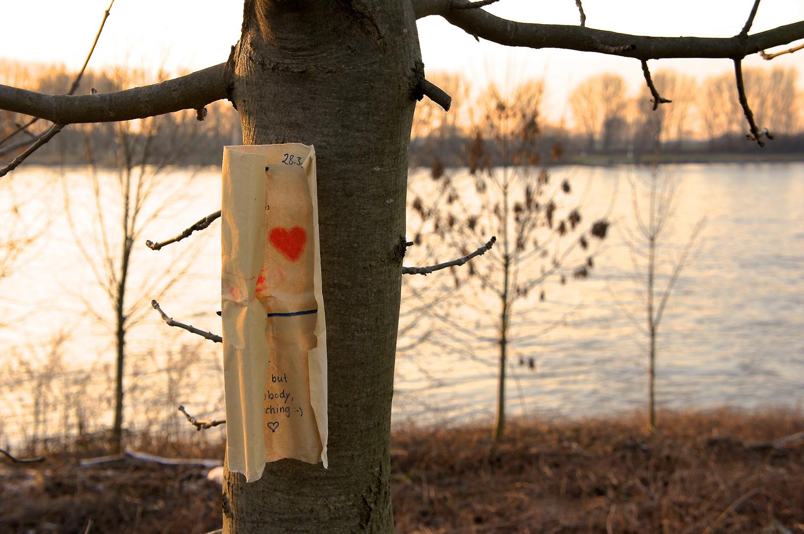Mensaje de amor?