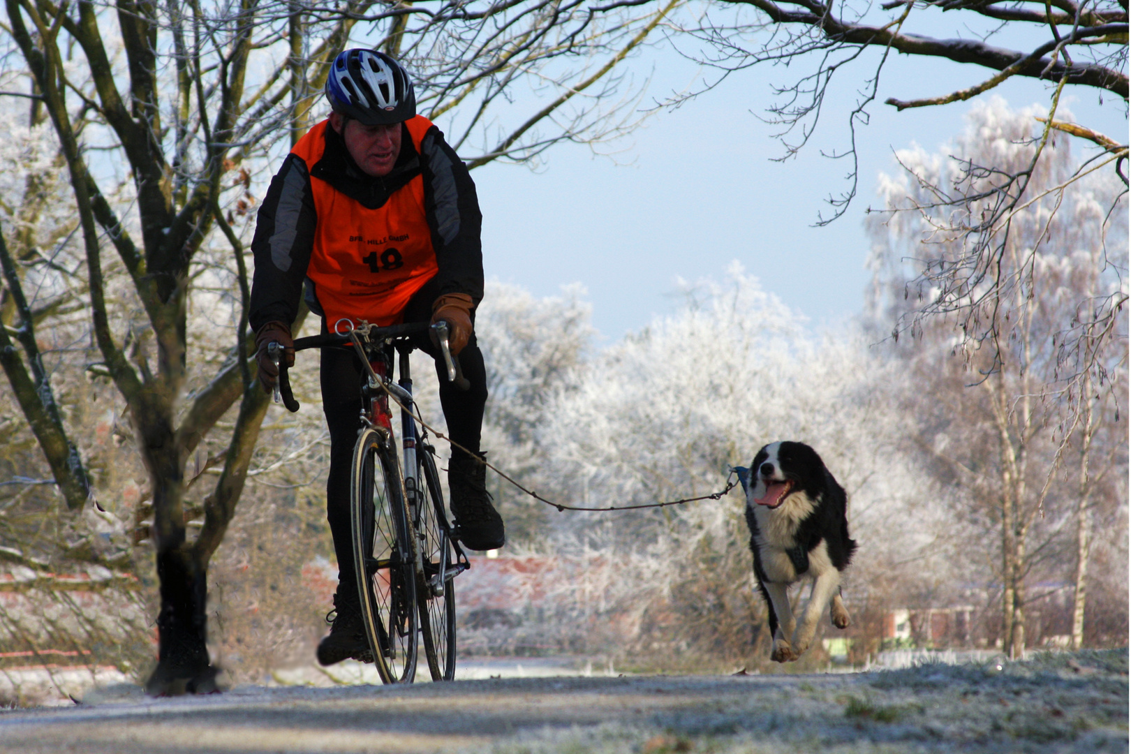 Mensch & Hund beim Sport