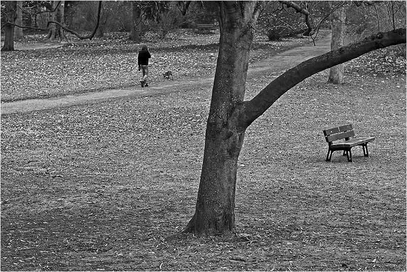 Menschen im Park - Gassi gehen