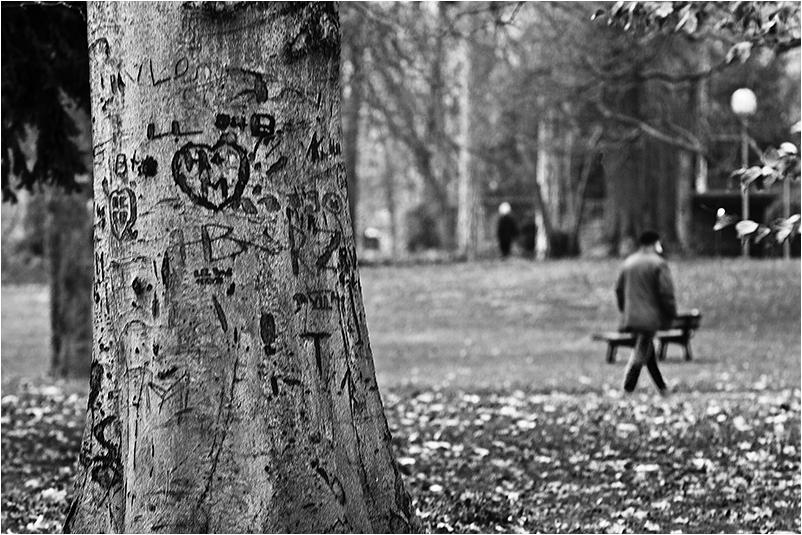 Menschen im Park - H+M ist überall