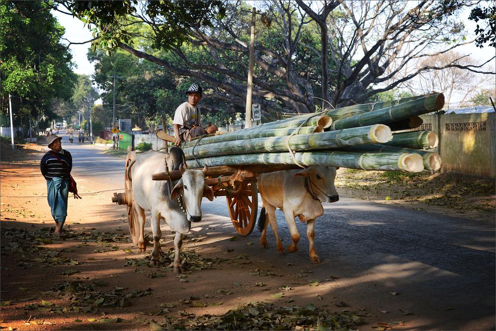 Menschen in Myanmar III