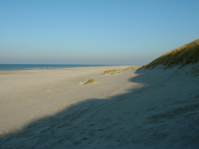 Menschenleerer Nordseestrand in Gronhoj