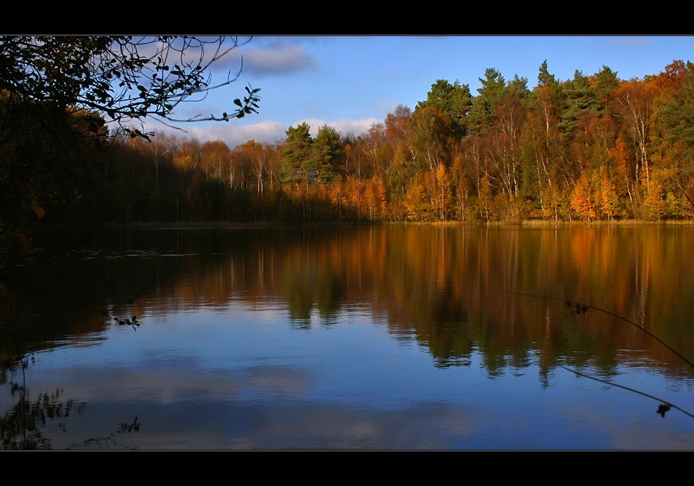 Mer à l'automne