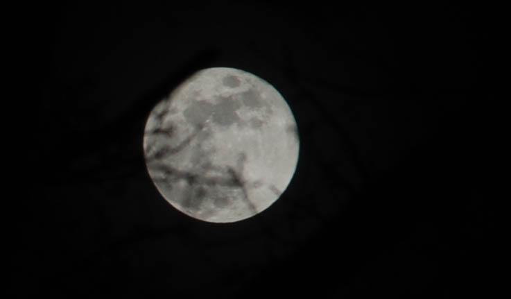 mer de lune