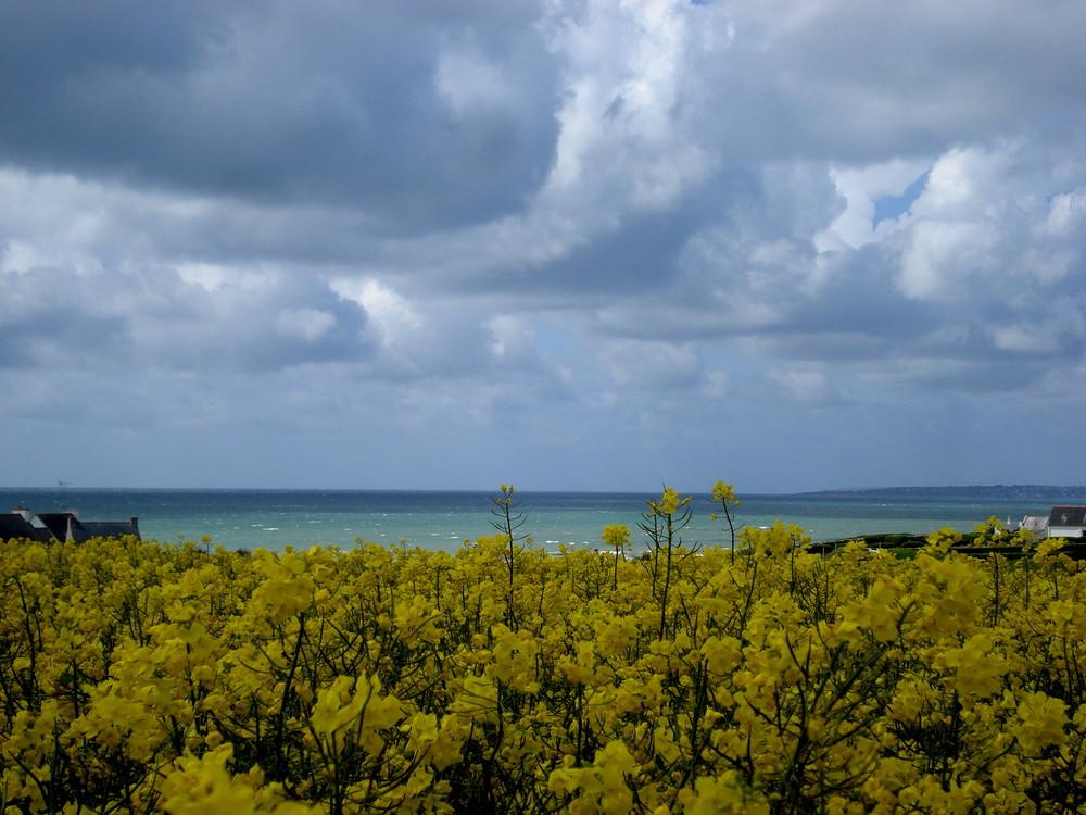 mer et campagne reunies a l occasion d une même photo