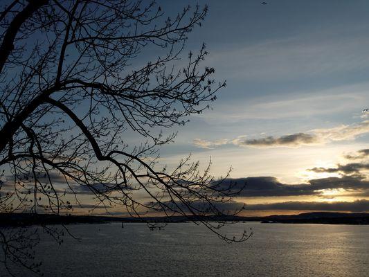 Mer Oslo