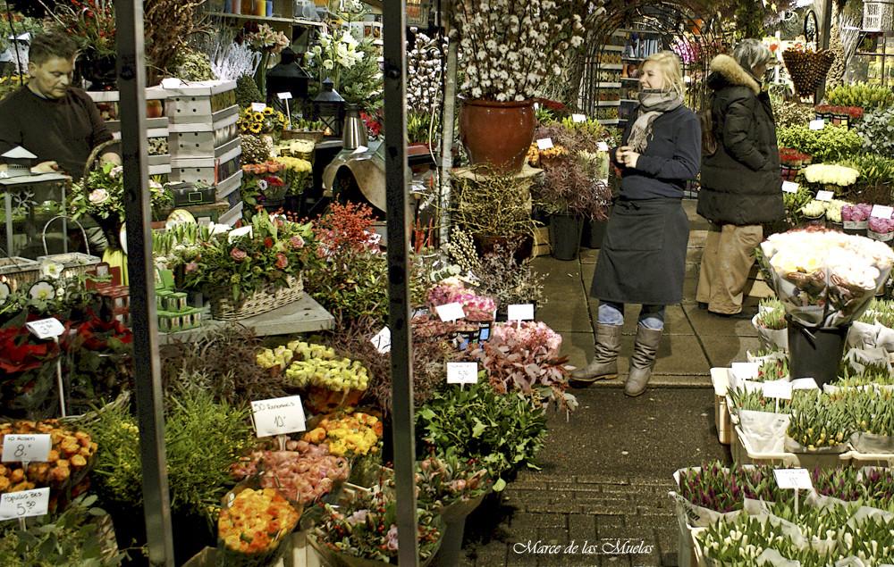 ...mercado de las Flores 3 ...
