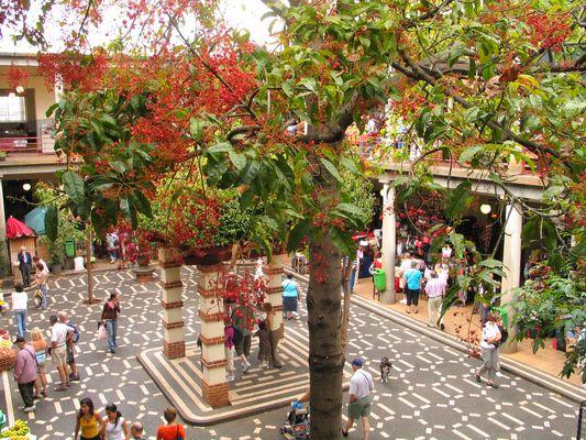 Mercado do Lavradores Funchal